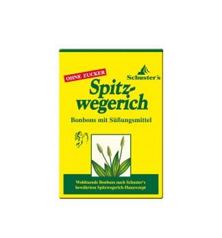 Spitzwegerich Husten-Bonbons Spitzwegerich zuckerfrei